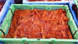 沖縄料理を楽しむなら【カリカリ熱々肉汁餃子居酒屋うりずん大曽根】へ!